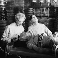 La novia de Frankenstein (Bride of Frankenstein, 1935), de James Whale.