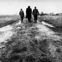 Sátántangó (1994), de Béla Tarr.