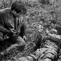 El perro rabioso (Nora Inu, 1949), de Akira Kurosawa.