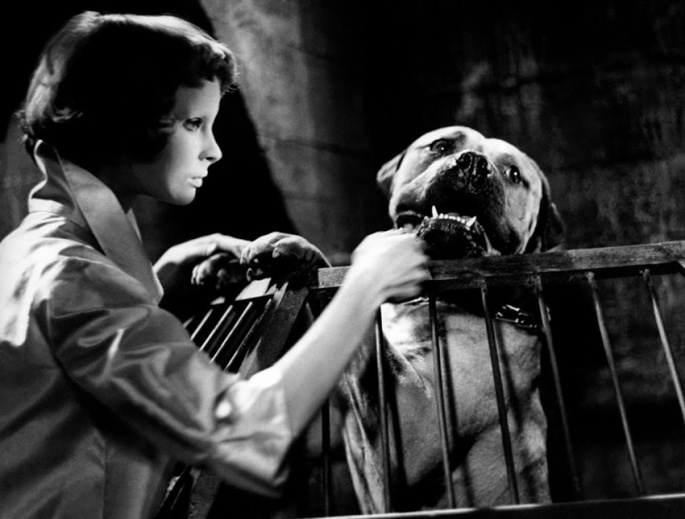 Ojos Sin Rostro - Les Yeux Sans Visage - Eyes Without a Face - 1959 - photo-still-001